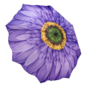 Galleria 33029 Wisteria Daisy Folding Umbrella