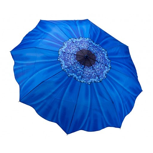 Galleria Daisy Blue Folding Brolly - elevate your sole