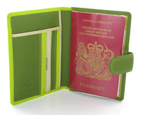 Visconti Rainbow Passport Holder RB75 Lime Multi