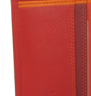 Visconti Rainbow Passport Holder RB75 Red Multi