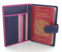 Visconti Rainbow Passport Holder RB75 Berry Multi