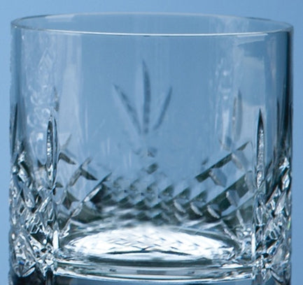 Decanter & Two Whiskey Tumbler cut crystal Set in Presentation Box