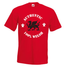 Authentic 100% Welsh Loose-Fit Unisex T-Shirt red