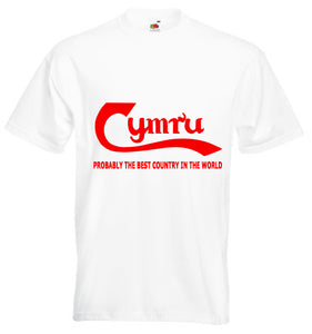 Cymru Best Country Loose-Fit Unisex T-Shirt white