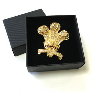 DH Welsh Collection Wales Feathers Brooch [br100]