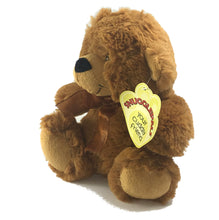 Coloured Plush Teddy Bear Soft Toy [18cm/caramel]