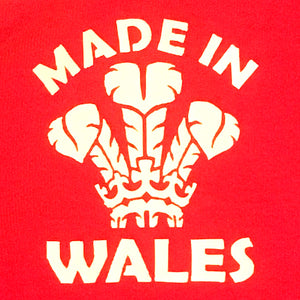 Wales Babygrow Romper Suit - Made in Wales