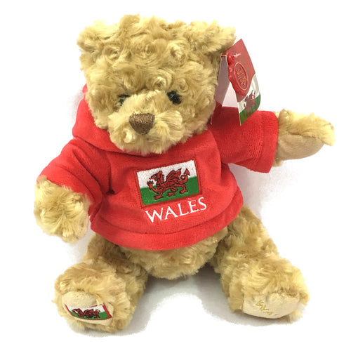 Keel 20cm Wales Flag Hoody Bear Soft Toy