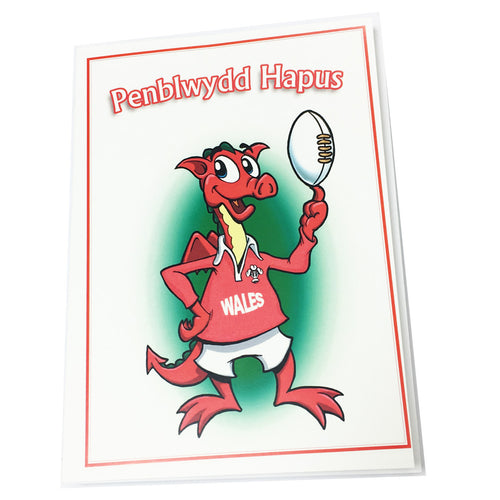 Nix Penblwydd Hapus Cartoon Welsh Dragon with Ball Birthday Card [wnx38]