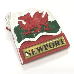 Wales Flag Newport Destination Fridge Magnet