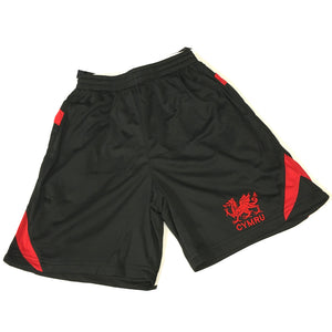 Wales Black Poly Cooldry Harlem Shorts [small]