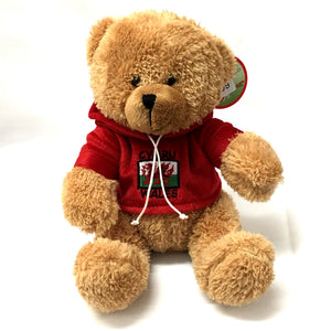 Wales Welsh Hoody Bear Soft Toy [wp102]