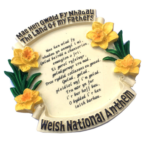 Welsh Daffodils National Anthem Resin Fridge Magnet [wm292]