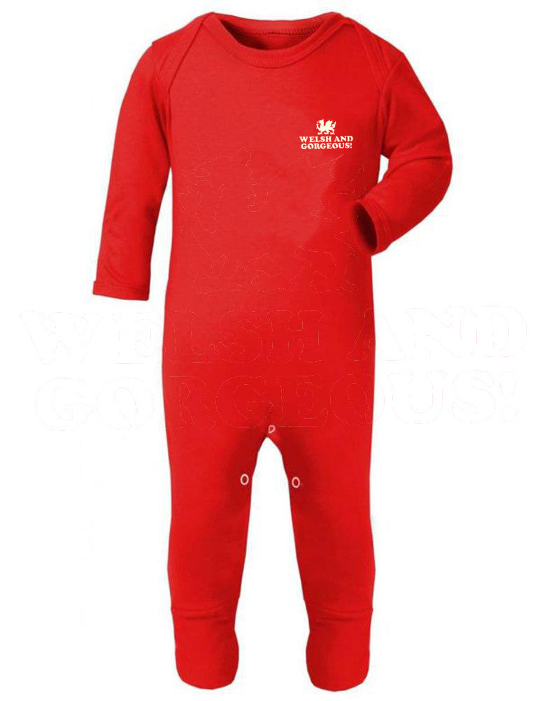 Wales Babygrow Romper Suit -Welsh & Gorgeous