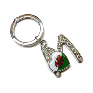 Welsh Flag Crystal Initial Keyring