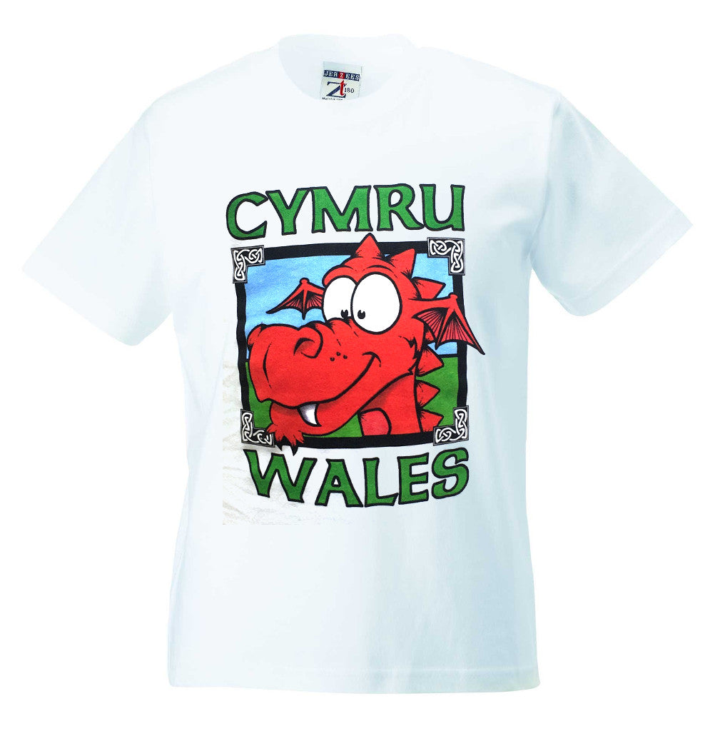 Cymru Wales Cartoon Dragon Childrens T-Shirt [g823]