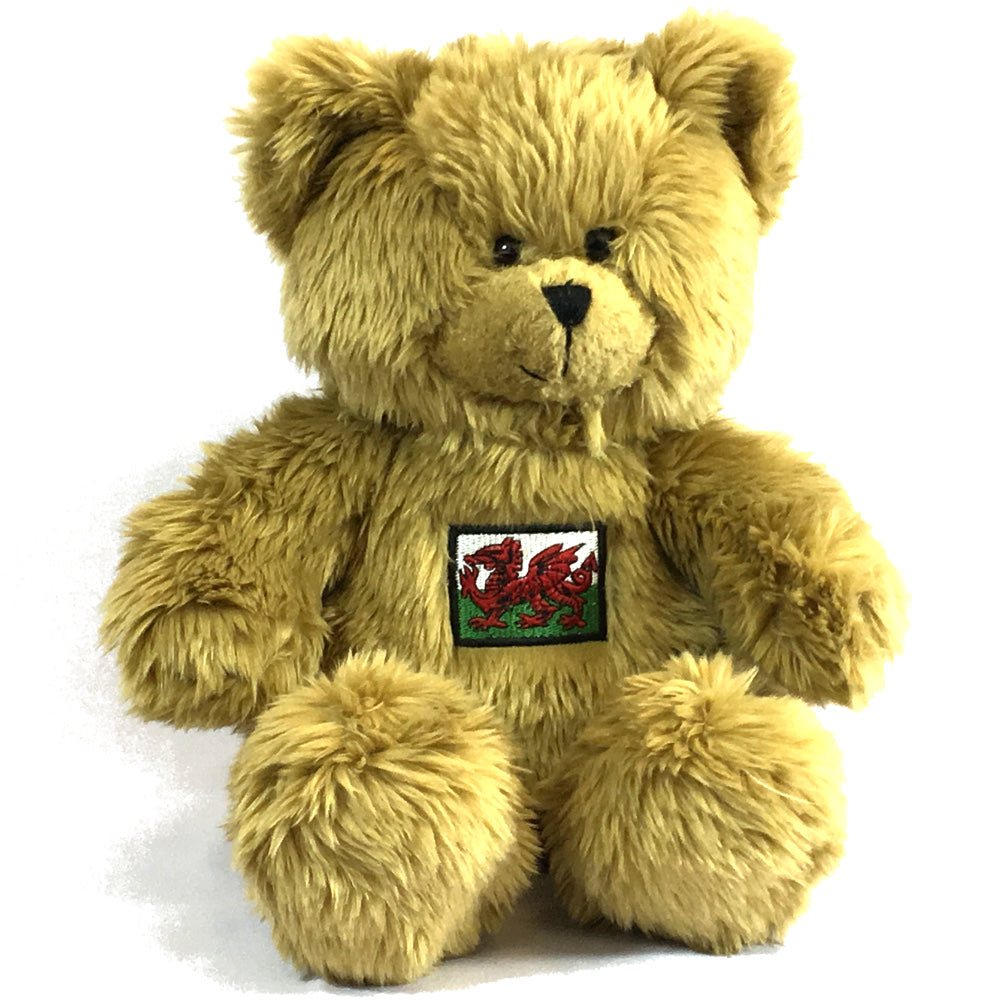 Wales 30cm Embroidered Welsh Flag Bear Soft Toy [wp83]