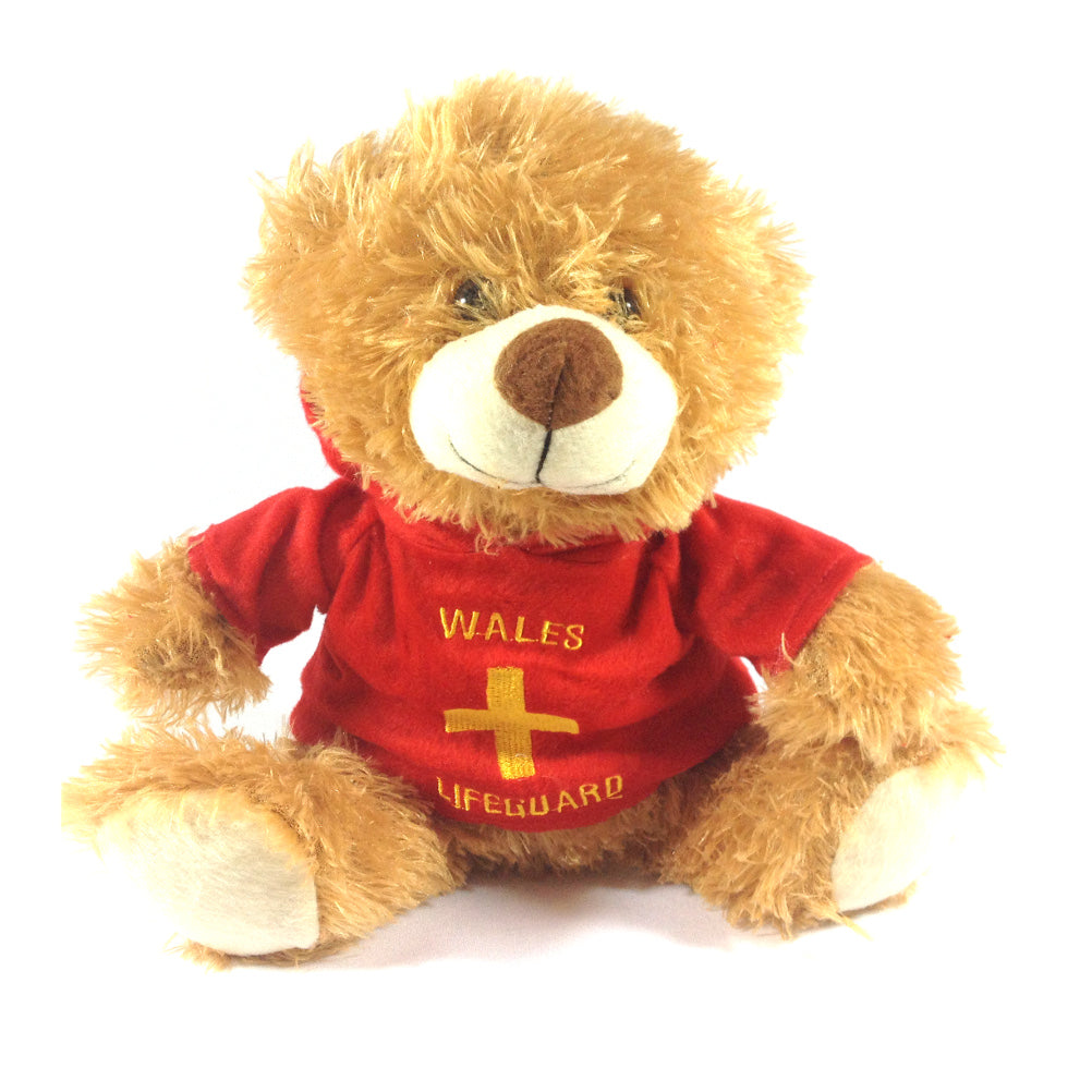 Wales Lifeguard Hoody Bear Soft Toy