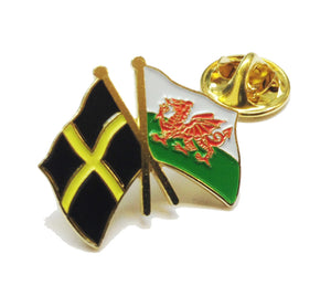 Wales Dragon Flag & St Davids Flag Pin Badge [wb80]