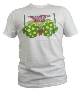 Welsh Humour Unisex T-Shirt 'Beautiful Valleys of Wales'