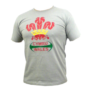 Wales Rugby Feathers Zinc T-Shirt