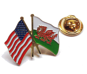 Wales / USA Friendship Pin Badge [wb67]