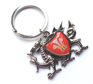 Welsh Dragon Spinning Wales Feathers Shield Keyring [wk284]