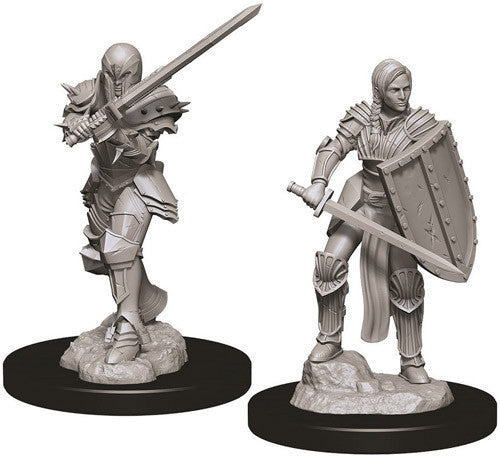 Nolzur's Marvelous Miniatures - Set of 2 Human Female Fighter - D&D table top gaming miniatures from Fandomonium
