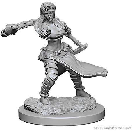 Nolzur's Marvelous Miniatures - Set of 2 Human Female Monk - D&D table top gaming miniatures from Fandomonium
