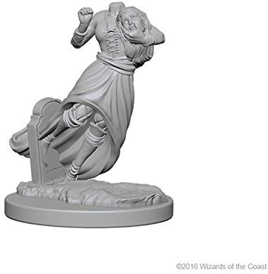 Nolzur's Marvelous Miniatures - Set of 2 Ghost & Banshee - D&D table top gaming miniatures from Fandomonium
