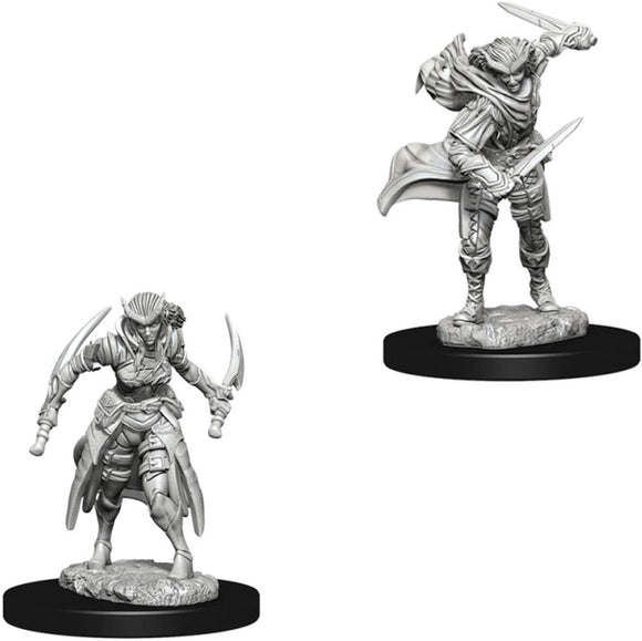 Nolzur's Marvelous Miniatures - Set of 2 Tiefling Rogue - D&D table top gaming miniatures from Fandomonium