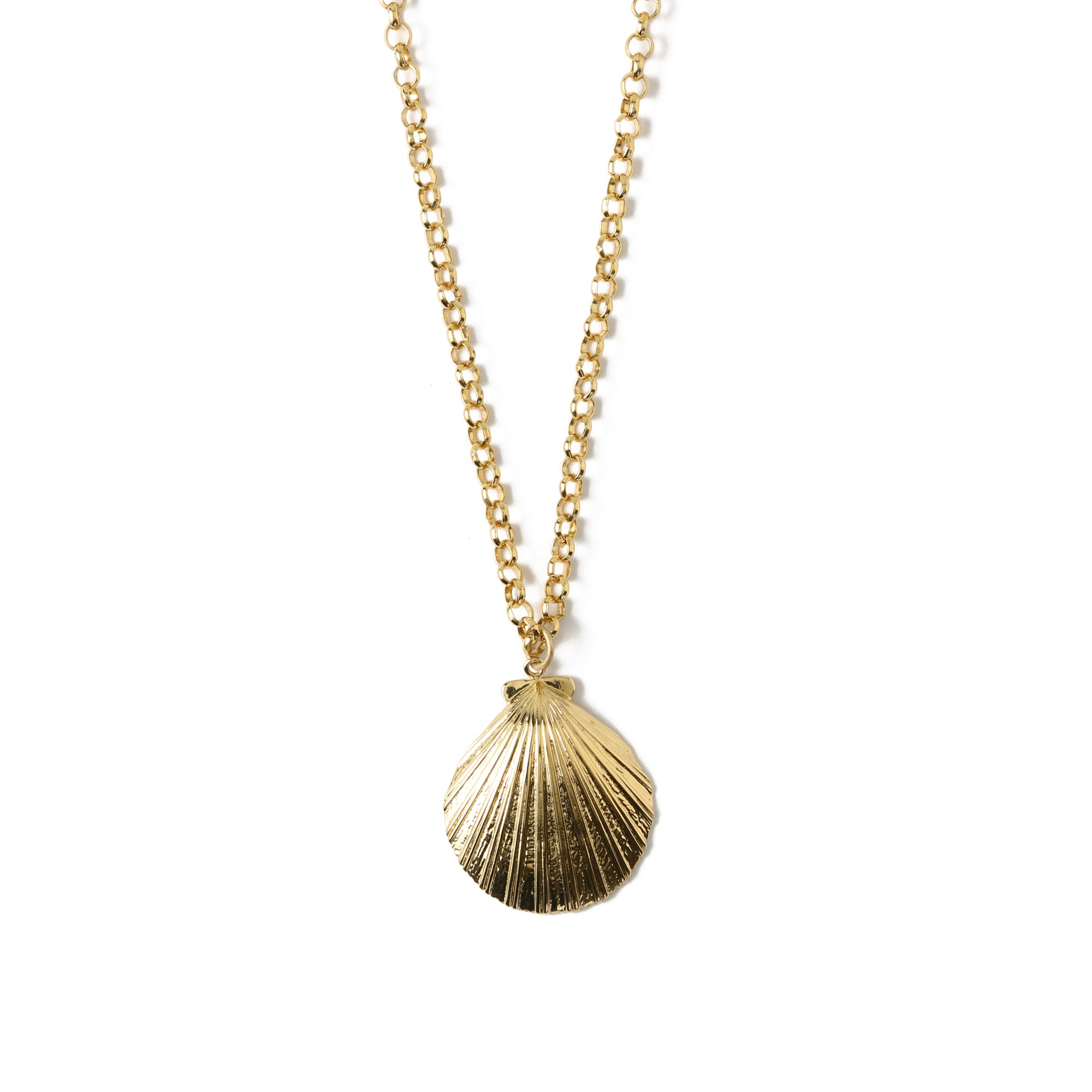 Statement Shell Chunky Chain Necklace
