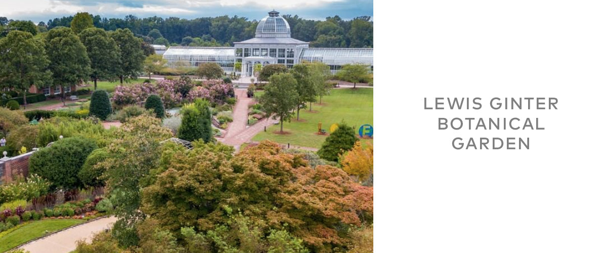 botanical gardens  lightbox richmond city guide