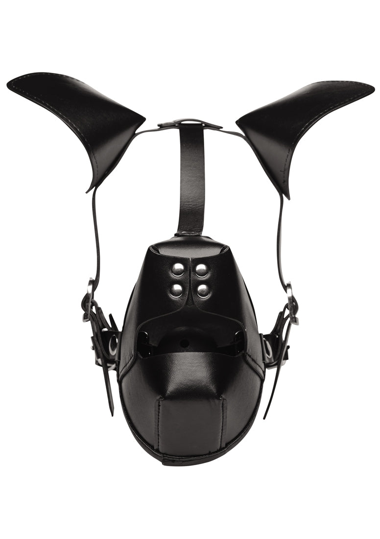 Pup Puppy Play Hood + Breathable Ball Gag