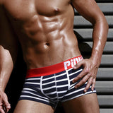 High-Quality Striped Panties - rulesfitness