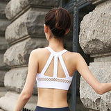 Mesh Sports Bra - rulesfitness