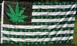 3'x5' RASTA MARIJUANA American FLAG, Authentic 9 Leaflets as Pictured