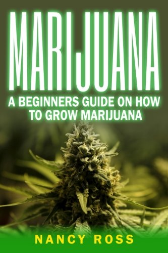 Marijuana: A Beginners Guide On How To Grow Marijuana