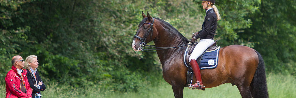 Our Horse Show Favourites