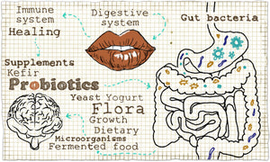 Should I Rotate My Probiotics? What's Important About Switching Strains for a Healthy Microbiome