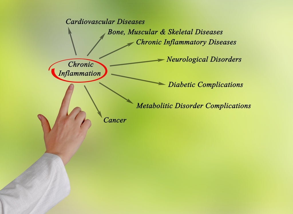 The Truth About Inflammation: The Link Between your Diet, Cancer, and Diabetes