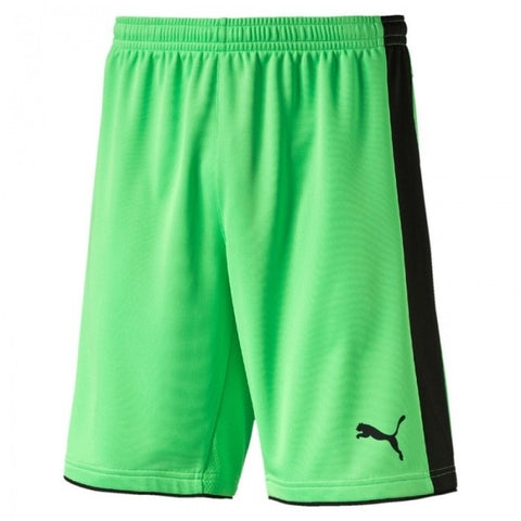 Puma Tournament Goalie Shorts