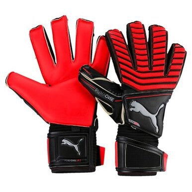 Puma One Protect 18.1 GK Gloves