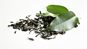 Using Green Tea Extract Supplements for Fat Burning