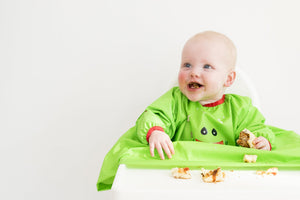 What Is Baby Led Weaning? by Gill Rapley and Tracey Murkett