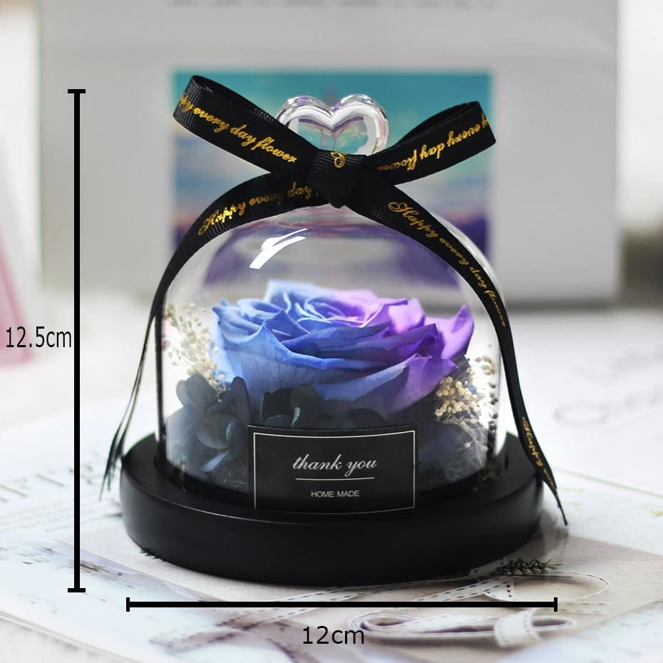 Rose In Glass Dome Romantic Valentines Day Present