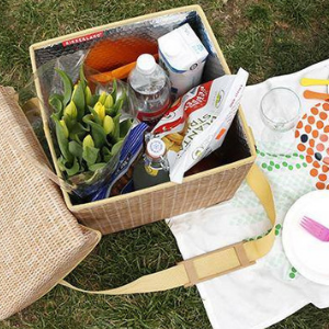 The Sun has got its hat on - time to celebrate National Picnic Week in Style