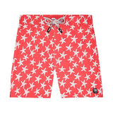 Tom & Teddy Swim Shorts