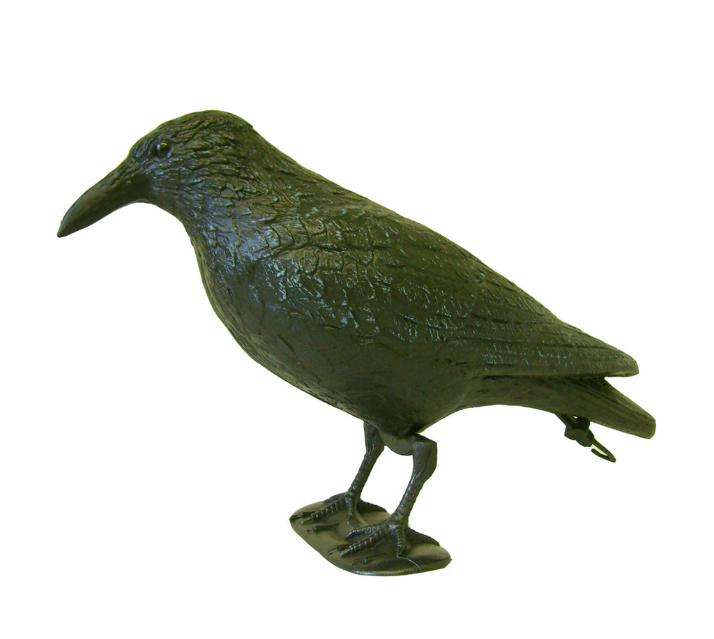 Decoy Crow