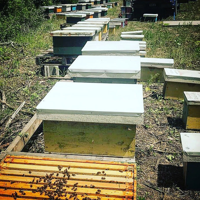 Spliting hives and making increases class